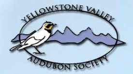 Yellowstone Valley Audubon Society