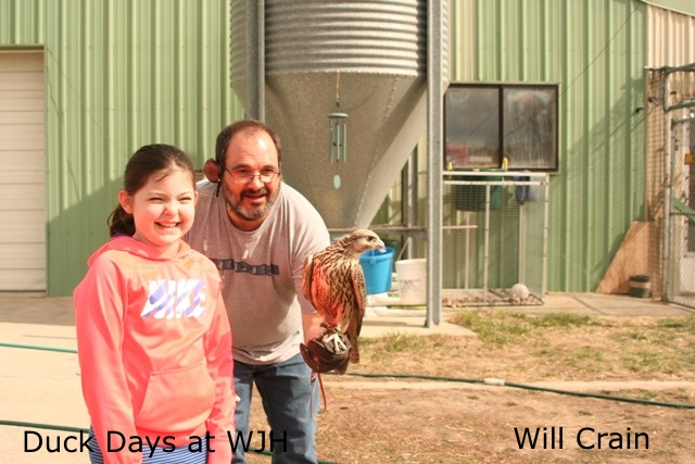 Sophie @ Duck Day @ WJH Wild Bird Resources ~ Mike Zermeulew, Falconer ~ 03.21.15