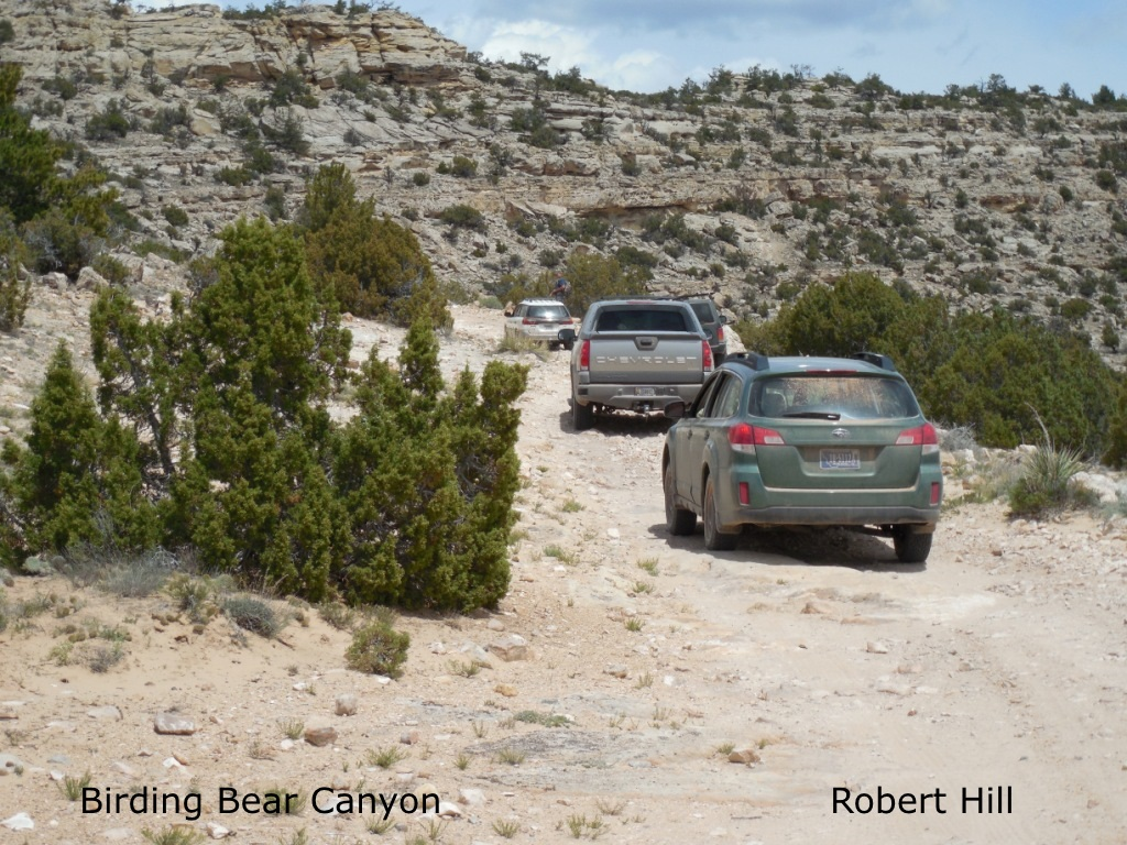 R. Hill - Bear Canyon Caravan June 2015