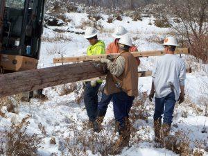 cottonwood-ranch-new-pole-platform-d-regele